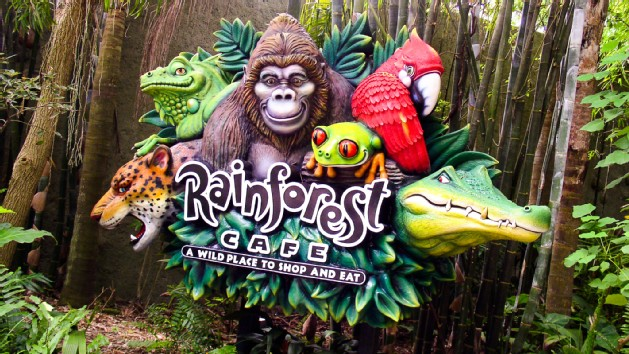 rainforest-cafe-animal-kingdom-00