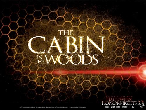 cabin2-2