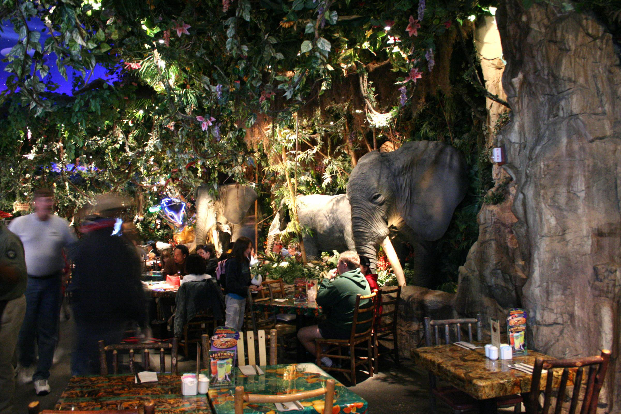 rainforest-cafe3